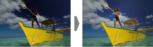 Selection Control Point