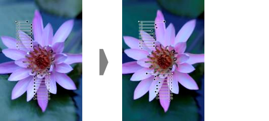 Color Control Point